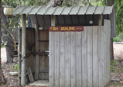 fish-scaling