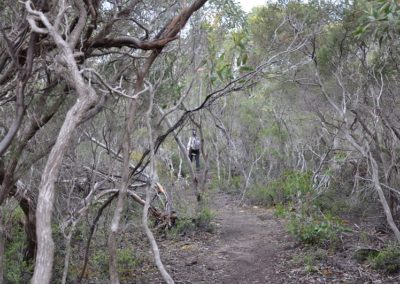 ki-wilderness-trail-hanson-bay